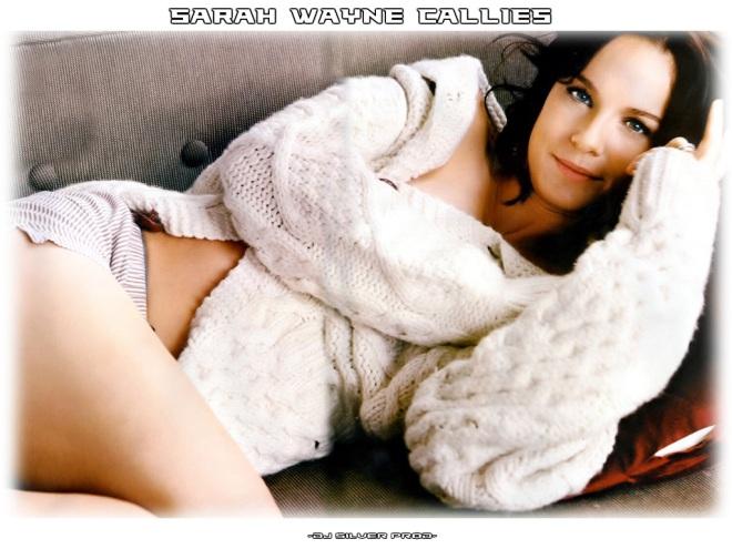 Prison Break Cast : Sarah Wayne Callies and Wentworth Miller